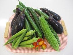 デイケア野菜